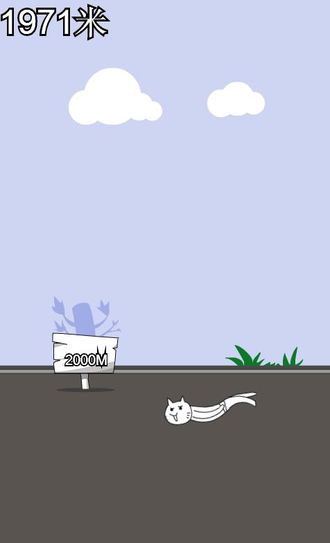 激射神经猫
