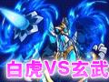 奥拉星白虎VS玄武