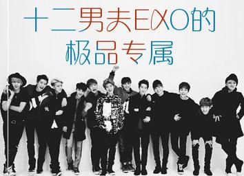 十二男夫EXO的极品专属