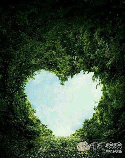 大自然的爱心,好美呀