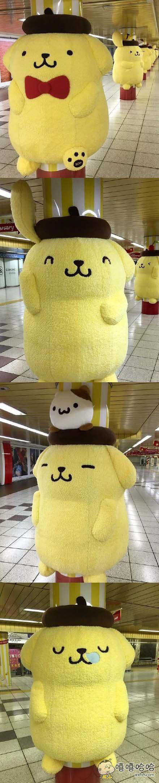 今早的新宿站,清一色萌萌哒布丁狗……上班的大概都想抱着柱子不走了吧