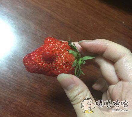 发现一个性感的草莓~