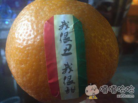 这是一只有内涵的橙子