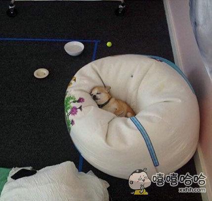 给我一张床,我可以睡到世界灭亡。