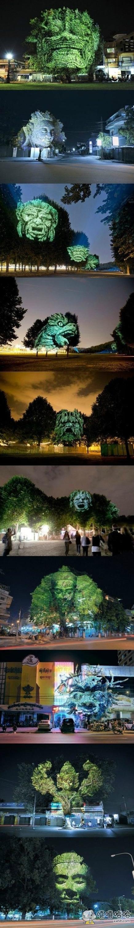 树木3D投影,你们感受下~~