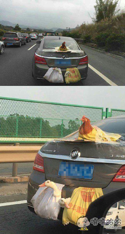 双涡轮增鸭,后置发动鸡。