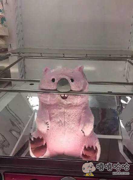 谁把洗碗的玩偶放在那里?!抬头一看吓傻我了