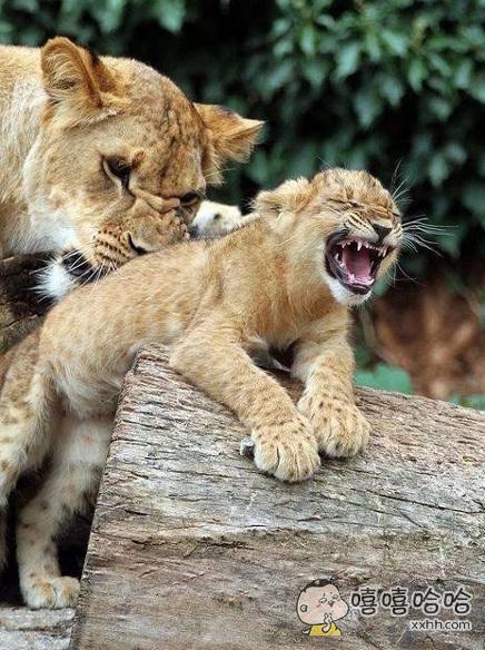 妈别搓啦!我背上皮都要秃噜啦!