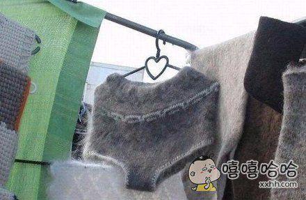 你们要的毛裤衩来了