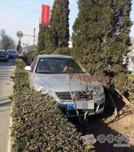 这个车位没人给抢了。