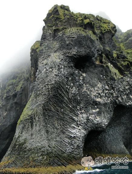 麻麻那只大象变成石头惹