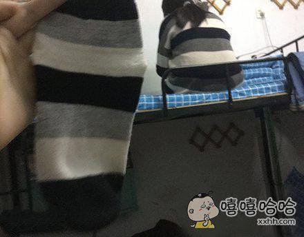 袜子和室友的毛衣撞衫了~哈哈!