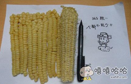 偷啃我的玉米是瞒不过我的,因为我都数过了~