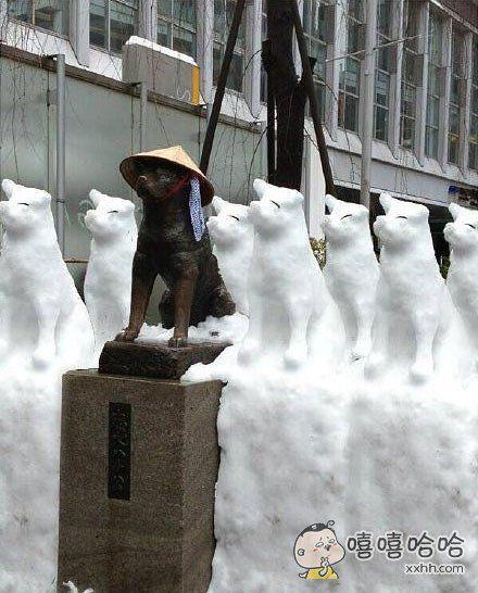 雪后的忠犬八公。