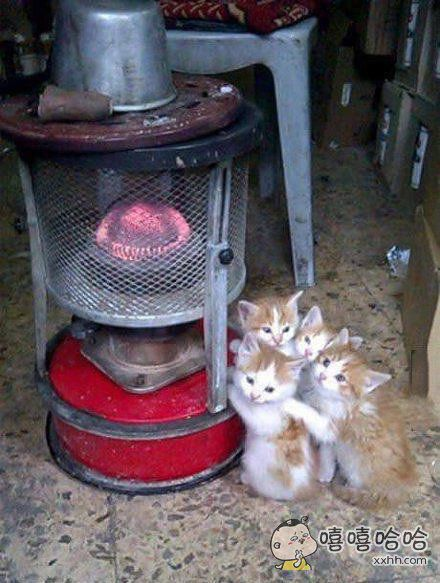 大冬天的还是这里暖和!