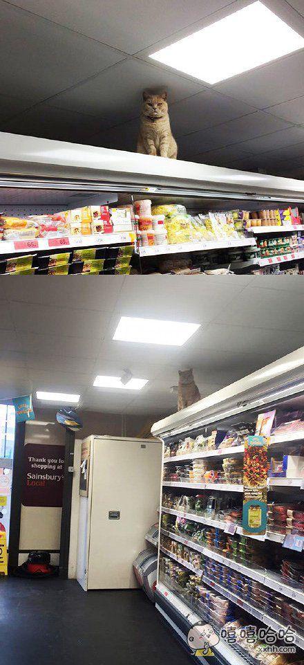 店里的监控坏了,于是。。。。