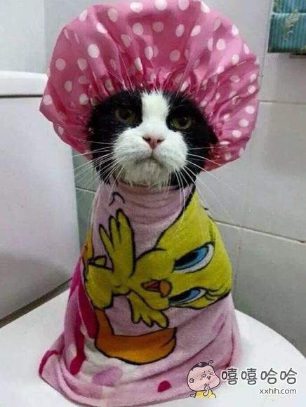 我刚洗完澡,大家早上好~~