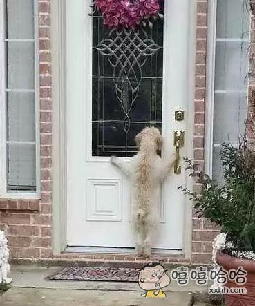 让我进去嘛