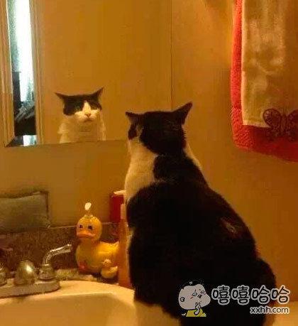 镜子里这二货是谁!