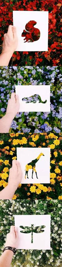 当剪纸遇上大自然,美翻了