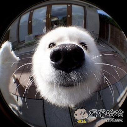 主银,开门~~开门~~是我肥来啦!!