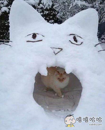 爱斯基摩喵