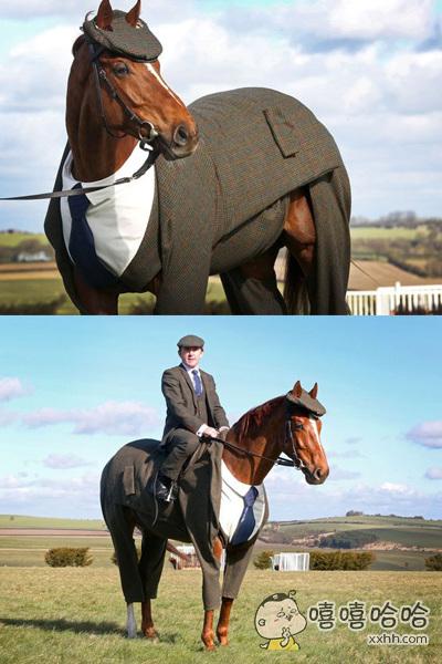 连马都这么帅气了