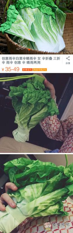 想要这把白菜伞