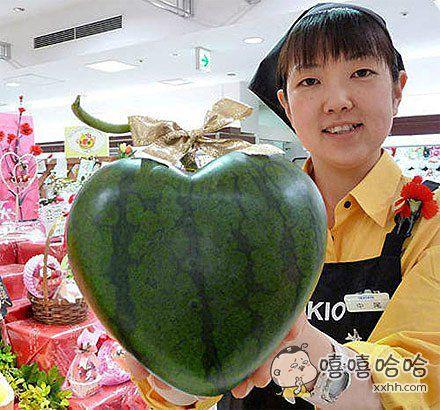 西瓜的改良品种,去女朋友家可以带这样的西瓜去吃。