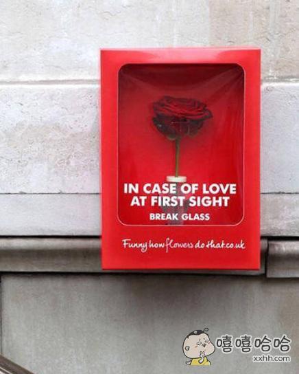 国外街头的玫瑰应急箱:如遇爱情,请打碎玻璃。