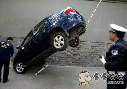 这司机也是高手啊