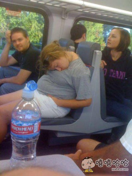 冷知识:长颈鹿睡觉的时候会枕着自己的身子
