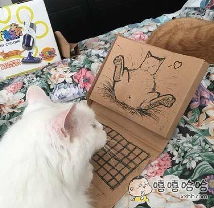 一看你就是只色猫