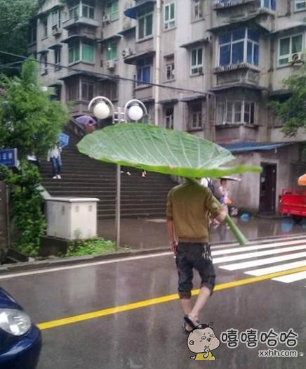 好大的雨伞。