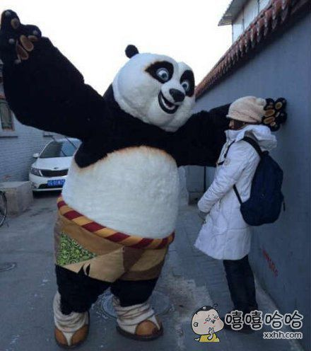 功夫熊猫当街壁咚