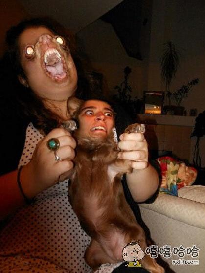 当人与动物换脸之后,整个画风都不一样了