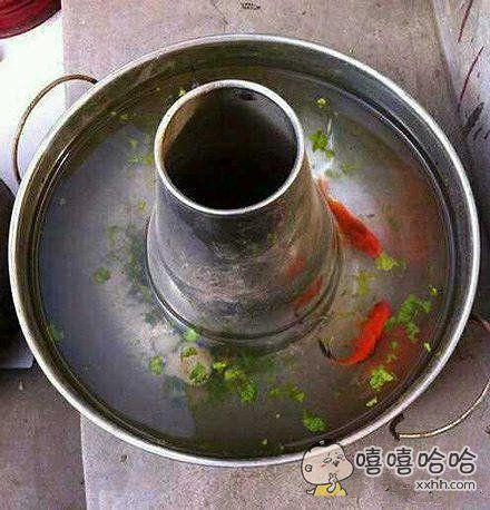 海鲜锅底,任性不解释