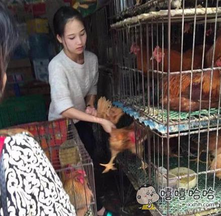 家楼下有一妹纸卖鸡,谁想买啊