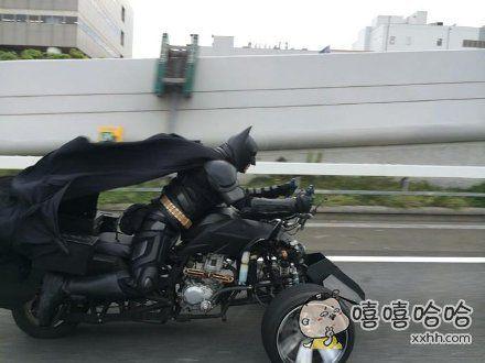 偶遇一只野生蝙蝠侠
