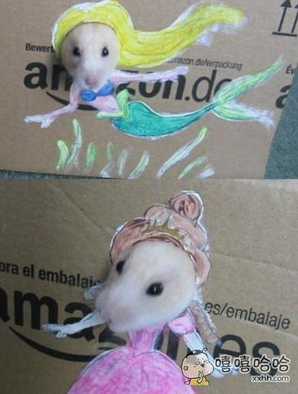 这是我见过的打扮得最漂亮的仓鼠