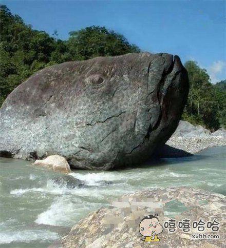 这礁石是天然的啊