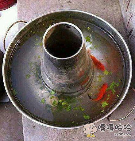 清炖金鱼汤!