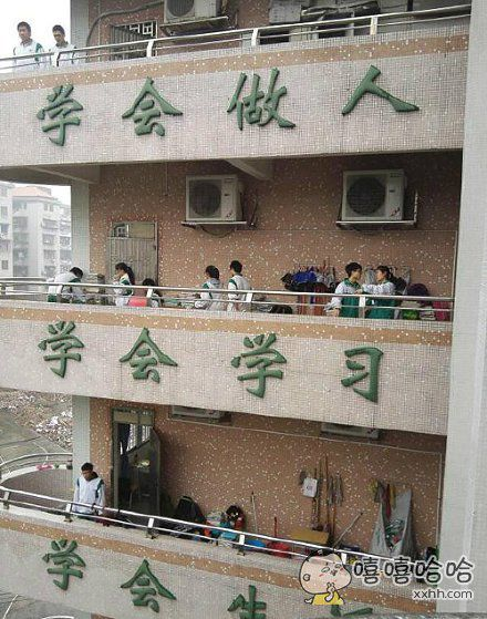 学校就是一个学习的地方,我信了!。