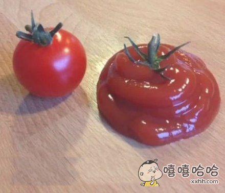 番茄和他爷爷