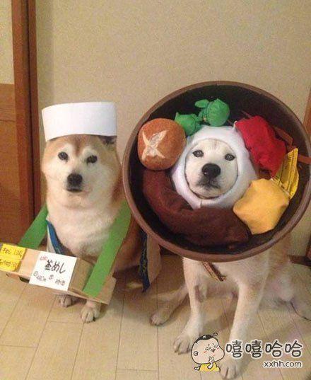 售货狗与货