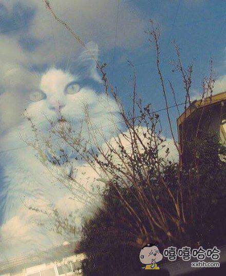一岛国小哥拍下的窗外所映的景象