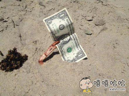 一只好财的螃蟹
