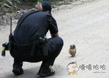 警察蜀黍我迷路了