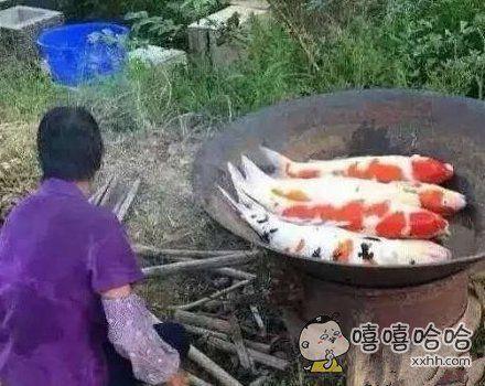 不知道这鱼味道怎么样