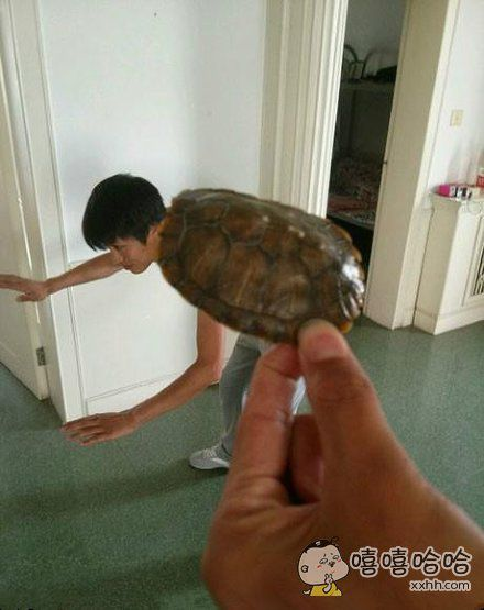 龟人是这么来的
